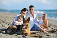Zábavné čítanie o tom, prečo si zaobstarať psa