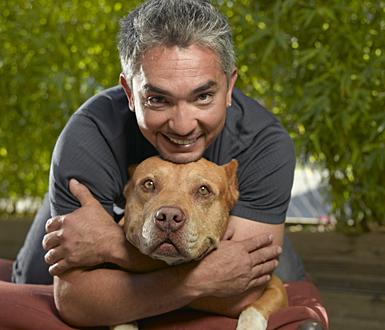 Cesar Millan - znalec psí duše