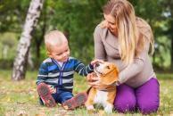 Pripravte psa na príchod novorodenca, pes a novorodenec