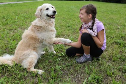 Dievča cvičí svojho psa