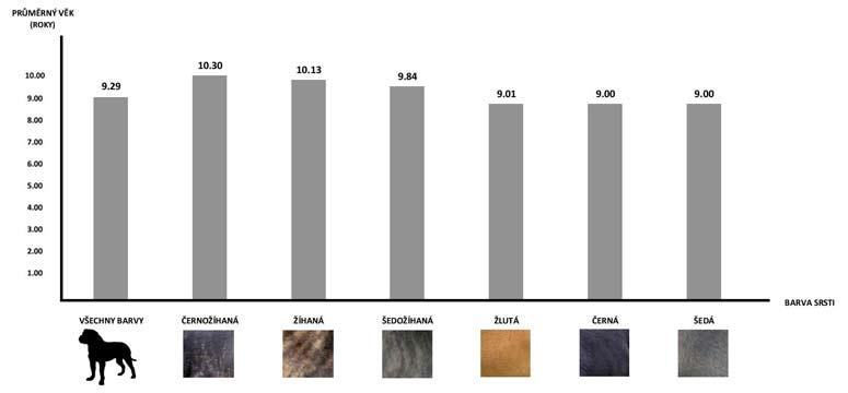 Graf průměrný věk Cane Corso