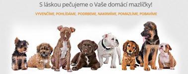 Venčení psů Pardubice