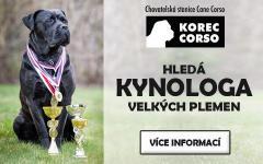 Kynoložka/kynolog pro chovatelskou stanici psů can