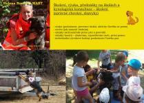 Výcvik a ukázky psů