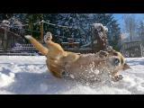 Zeus se zlobí, dostanete od něj velkou sněhovou koulí!