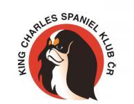 Klubová výstava king charles španělů