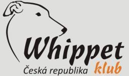 Klubová výstava whippetů