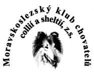 Klubová výstava collií a sheltií